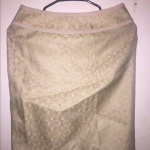 Gorgeous Ann Taylor Silk Skirt Size 2